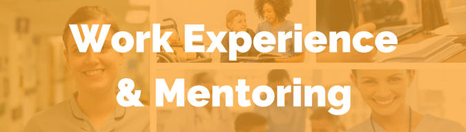 Health Work Experience & Mentoring
