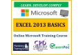 Microsoft Office Excel 2013 Basics - Online CPD Training Course & Certification