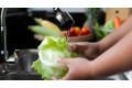 Food Hygiene Awareness e-learning