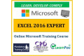 Microsoft Office Excel 2016 Expert - Online Training Course - UK CPD Accredited Certification