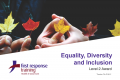 Equality, Diversity and Inclusion (3hrs)