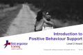Positive Behaviour Support (6hrs)