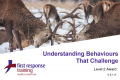 Managing Behaviours that Challenge (3hrs)