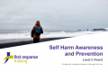 Self-harm Awareness (3hrs)