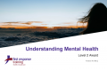 Understanding Mental Health (6hrs)