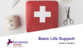 Basic Life Support (2hrs)