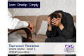 Depression Awareness - Level 1 - E-Learning Course - CPDUK Certified